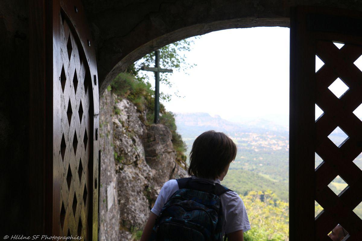 Provence incontournable: une randonnée remplie de magie dans la forêt sacrée de la Sainte Baume