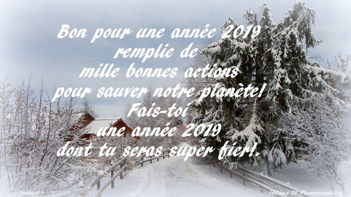 12 cartes de vœux de bonne année 2019 gratuites et bonnes pour la planète