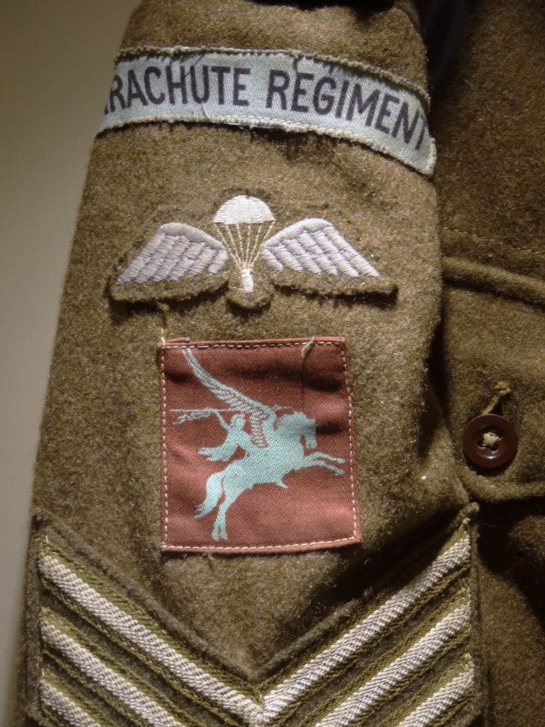 The Pegasus Regiment badge.
