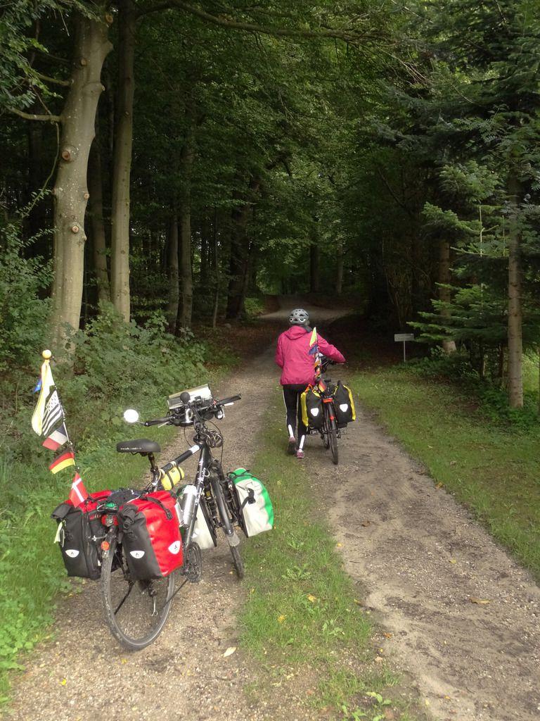 En route à travers bois pour rattraper la piste cyclable vers Horuphav.