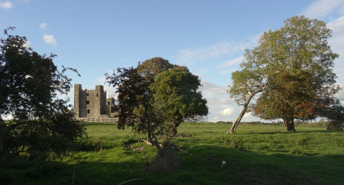 Les ruines de l'abbaye de Bective, juste à côté de notre B&B