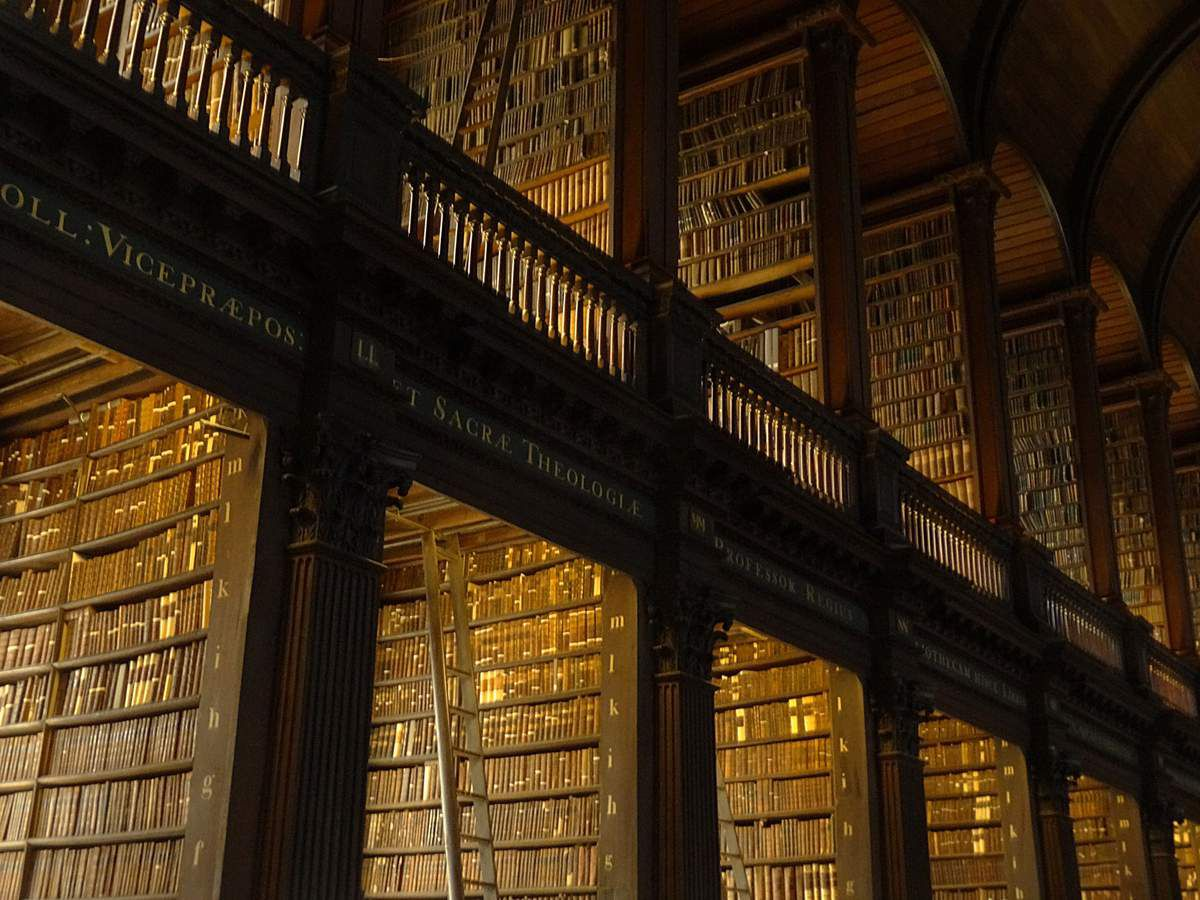 """The Long Room"". Quelques étagères ..."