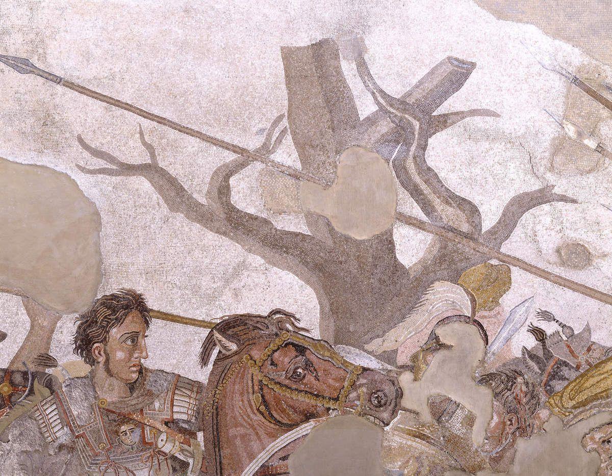 Fig. 11  PARTICOLARE DELL'ALBERO