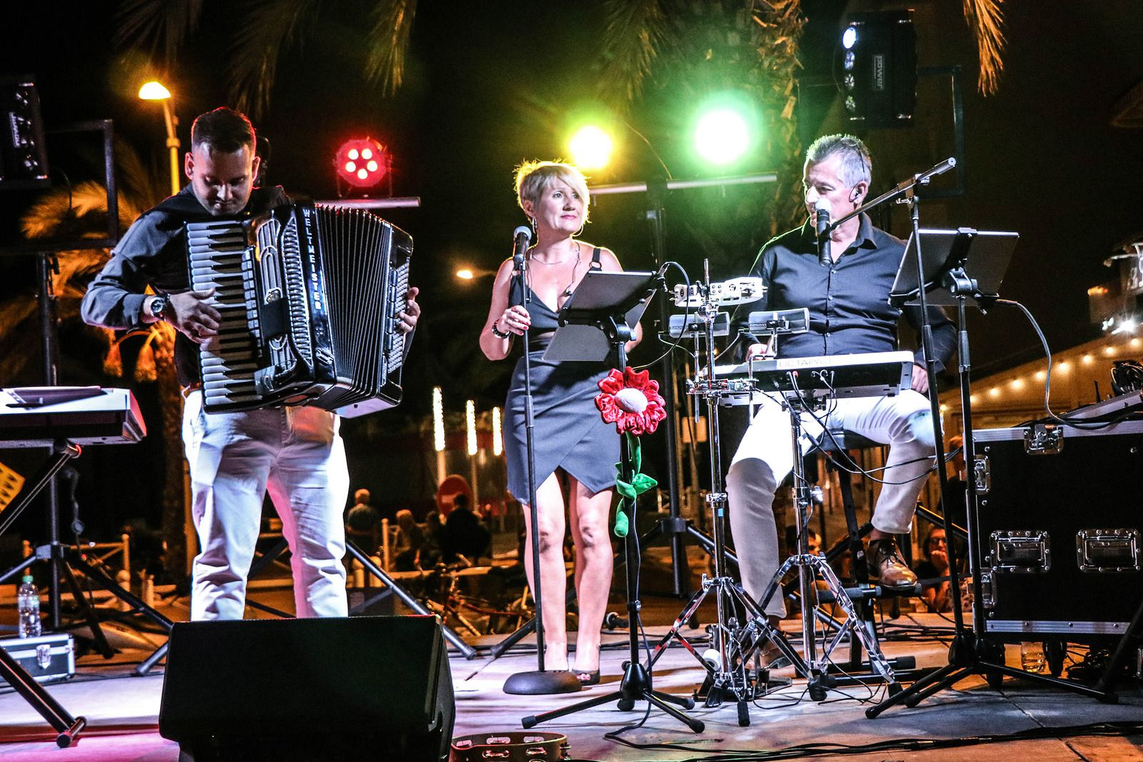 Groupe musical Aude