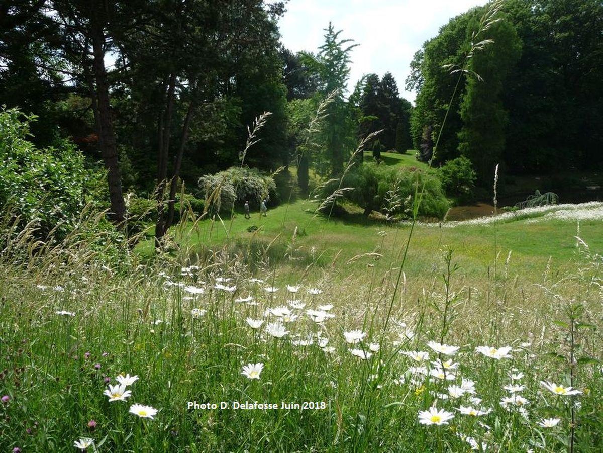L'Arboretum du Manoir aux Loups, Route de Neuville Halluin.