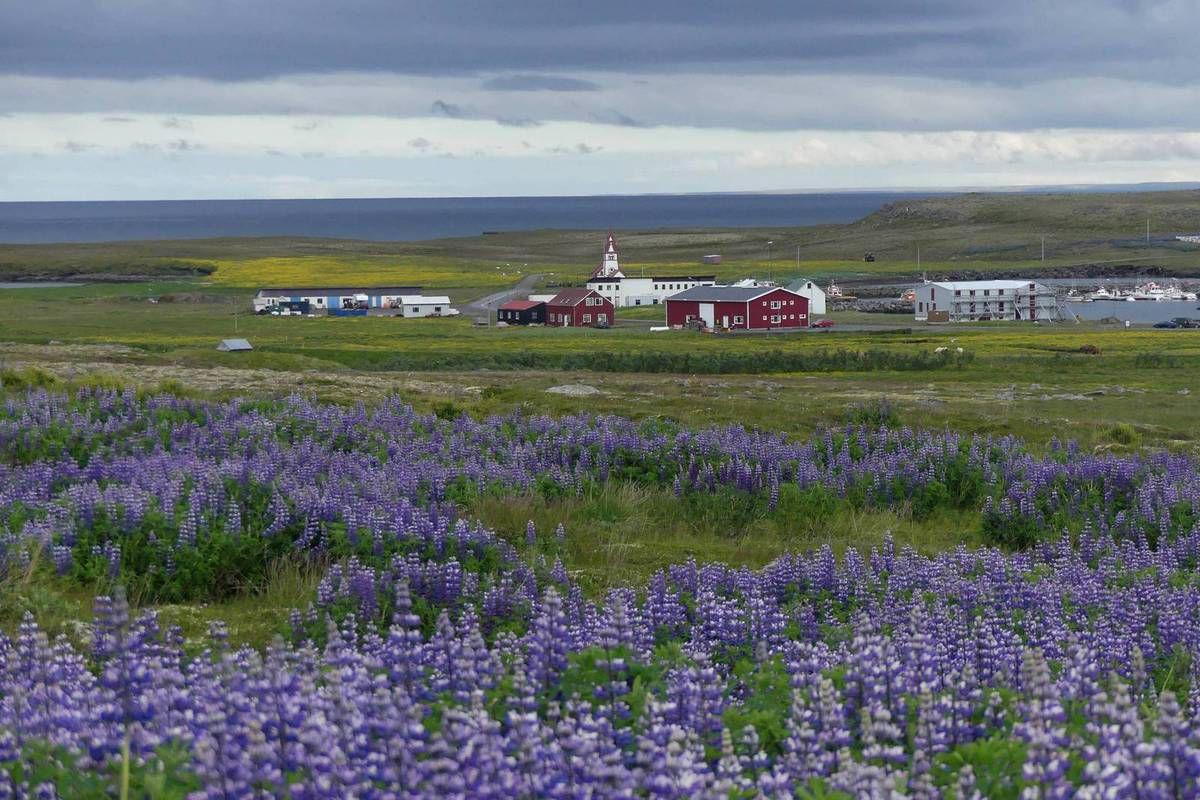 Islande 2017 : J8 Seyðisfjörður-Kópasker 373 Kms