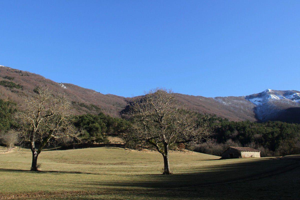 Chercher le Printemps dans la vallée de la Gervanne