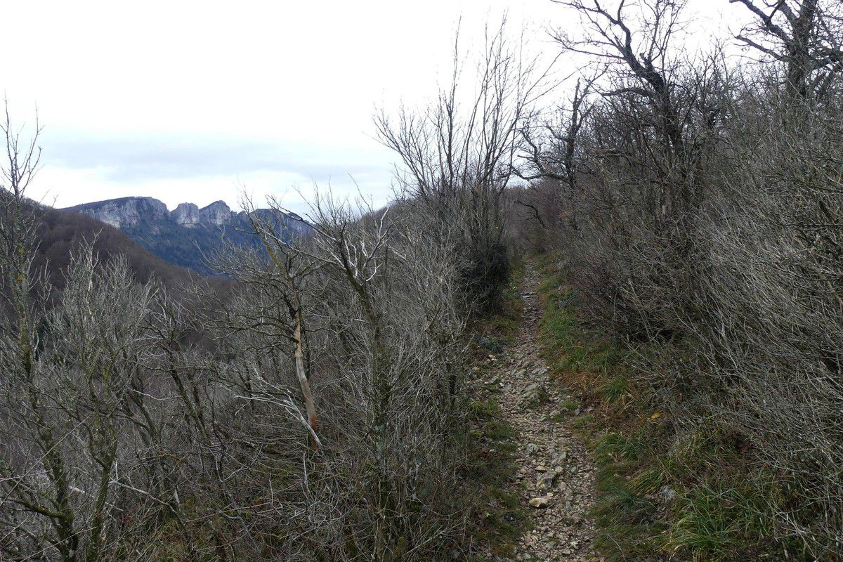 Col de Sonnaize (810m)