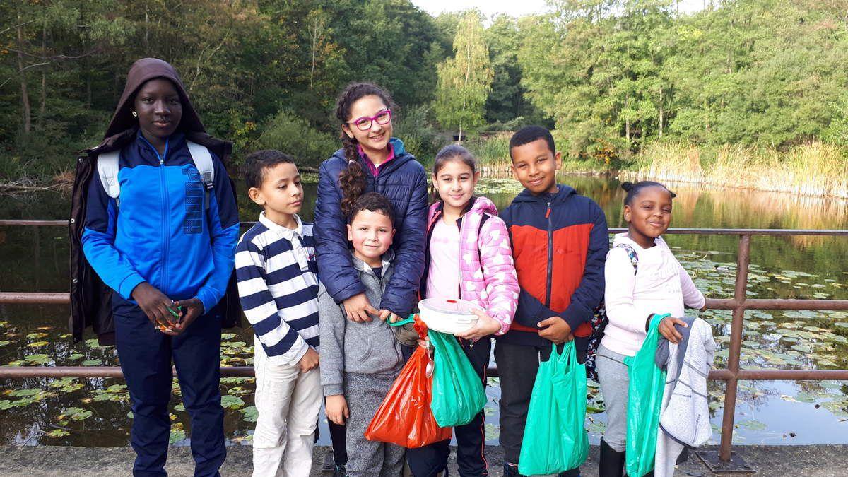 Les élèves de l'UPE2A en forêt.