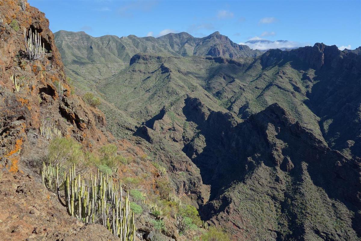 la vue sur le cône enneigé et ennuagé du Teide derrière les barrancos verdoyants
