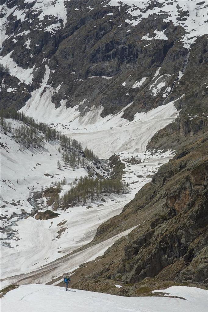 J2 : plus bas dans le vallon du Vaccivier, surveillés par les chamois