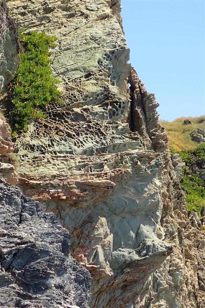 à la découverte de la géologie insolite des îles de la Ratonnière et Longue... et des crevettes dans les trous d'eau...