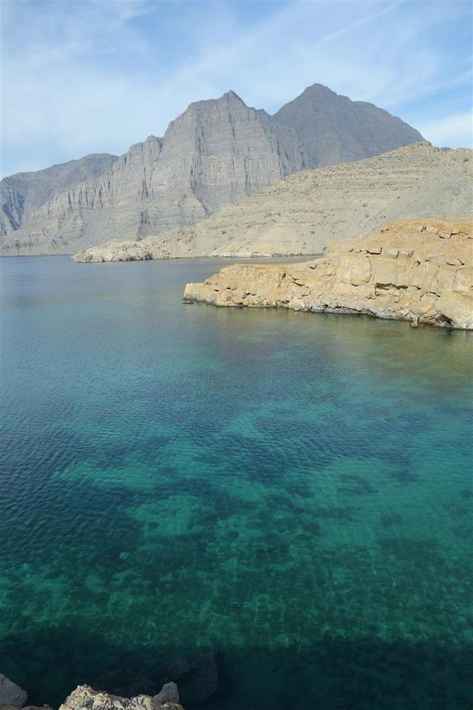 une sélection de photos, au-dessus de l'eau, sur l'eau ou sous l'eau...