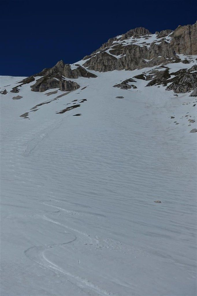 moquette dans la descente de la sella dei Grilli au-dessus du Val Maone