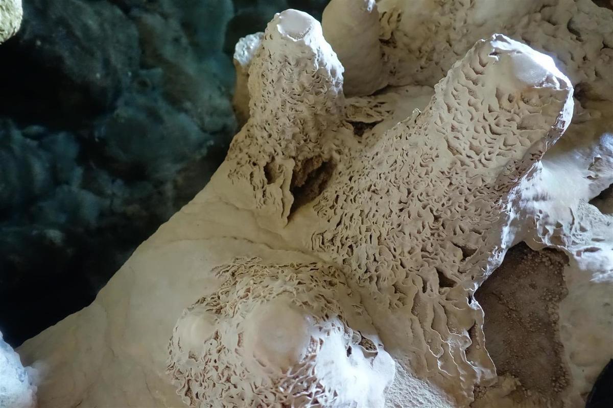 des grottes marines