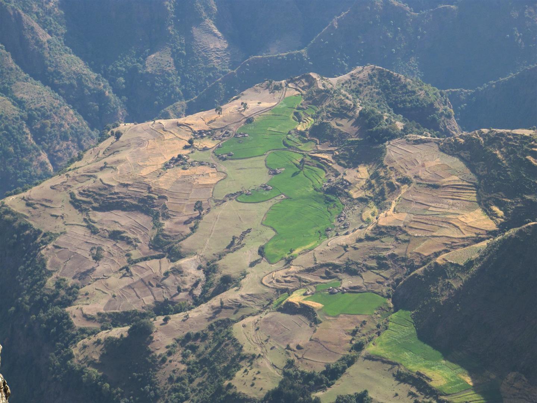 le Simien côté falaises, des roches volcaniques érodées assez proches de ce que l'on peut observer à La Réunion), panorama du sommet Imet Gogo à 3900 m sur les escarpements, les pitons et villages 800 m en contrebas et leurs champs verdoyants accrochés aux pentes