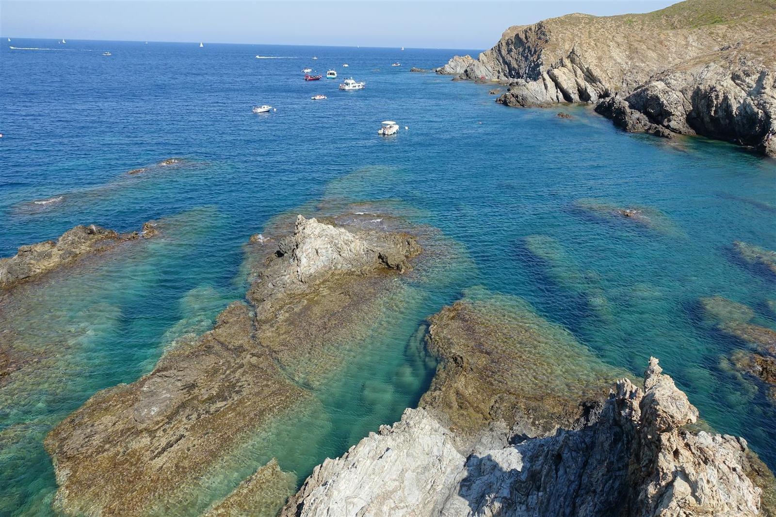 les schistes de la réserve marine de Cerbère Banyuls-sur-Mer