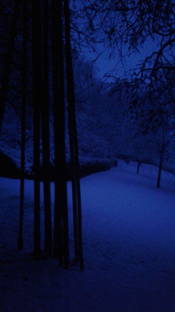Les bâtons ferrés sur un fond de neige bleue