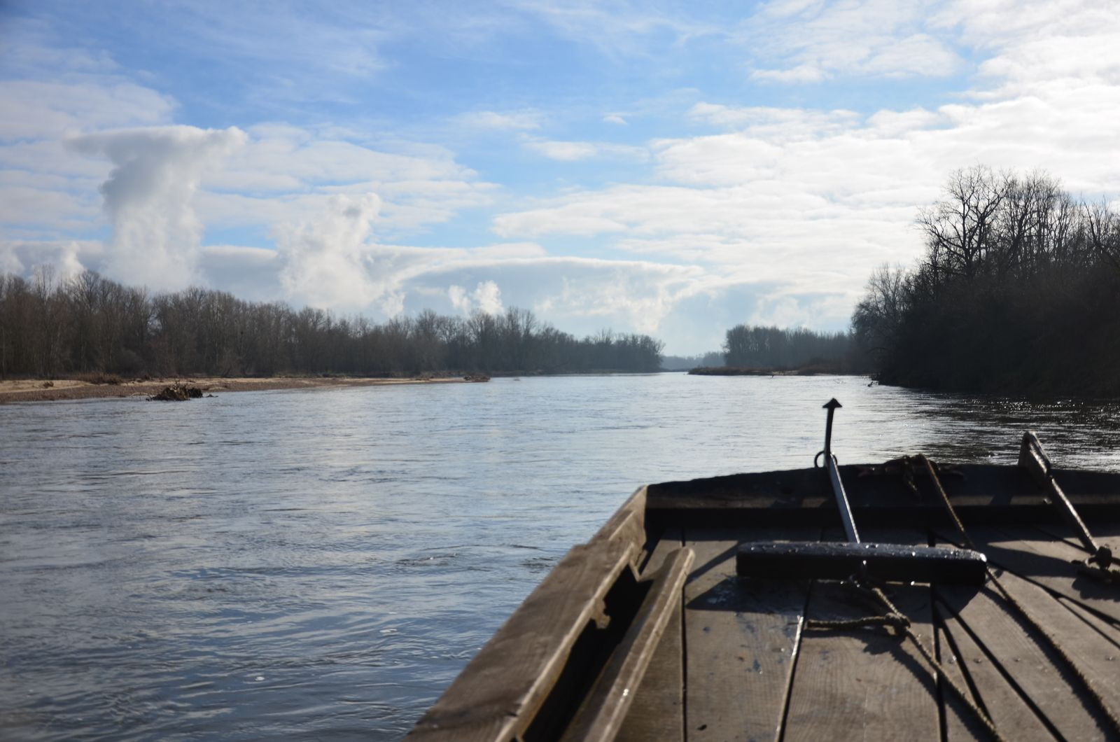 Sur le détroit Villeneuve / Moulins : la rivière change totalement d'allure, les vertes prairies de bordures sont remplacées par une dense ripisylve beaucoup moins attachante apportant une grande mélancolie à ce segment de rivière