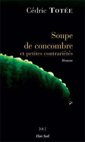 Soupe de concombre et petites contrariétés, roman de Cédric Totée, lauréat 2015 du Prix Première chance à l'écriture