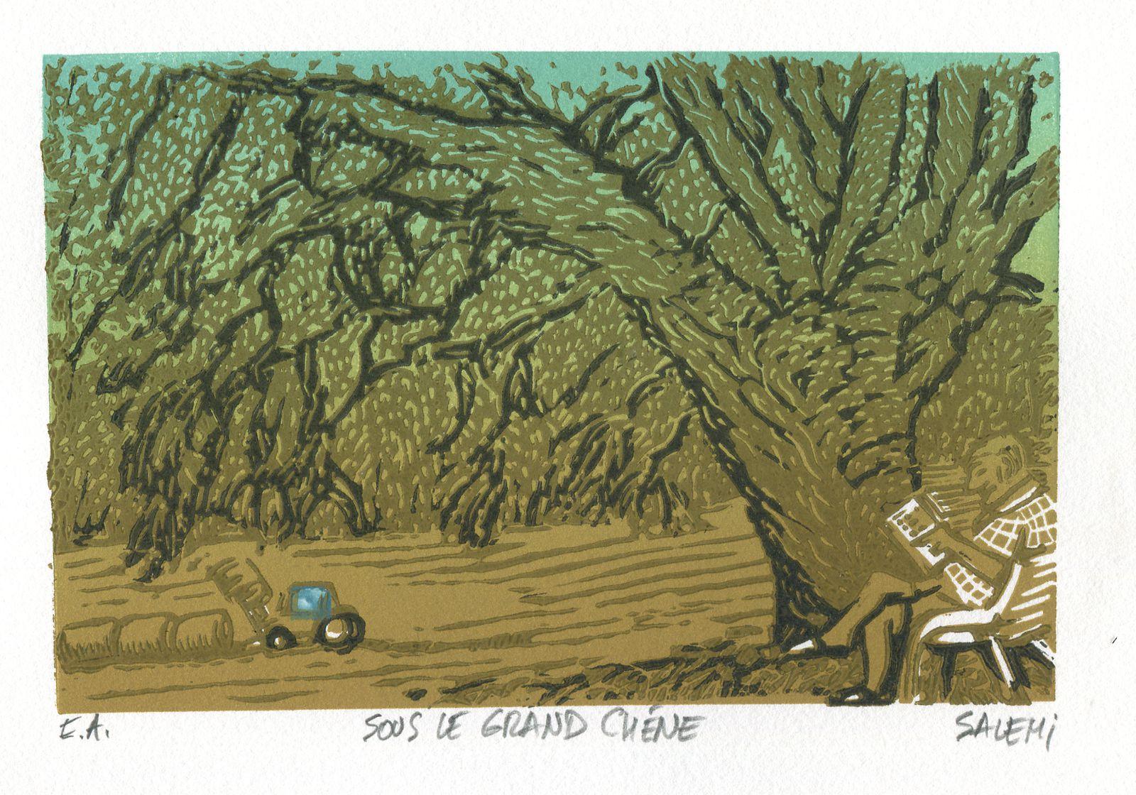 Nouveaux linos de parrainage de Jean-Claude Salemi