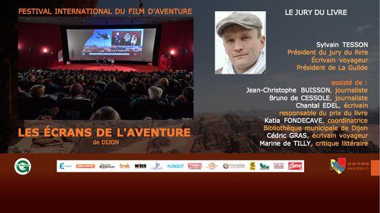 Divers créations graphiques pour le festival de Dijon 2016