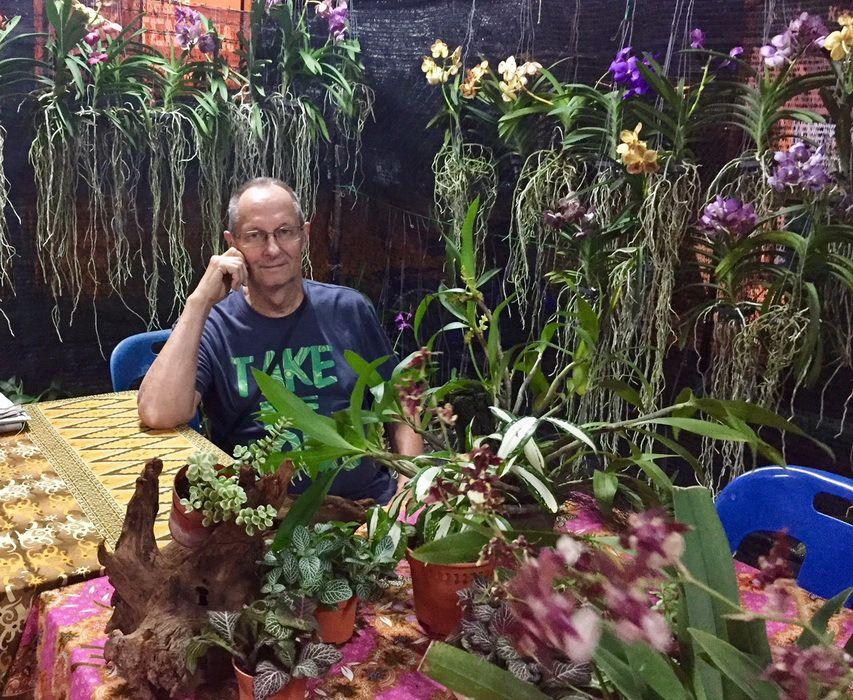 Des Orchidées pour la Nouvelle Année