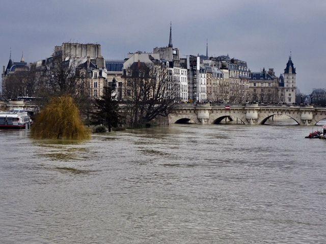 La Seine, hier au centre de Paris, par Hélène Couillaud