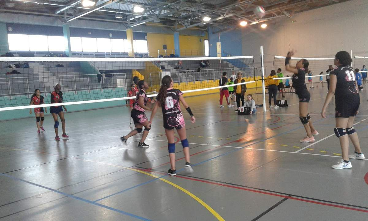 AS Volley semaine du 25 au 29 novembre.
