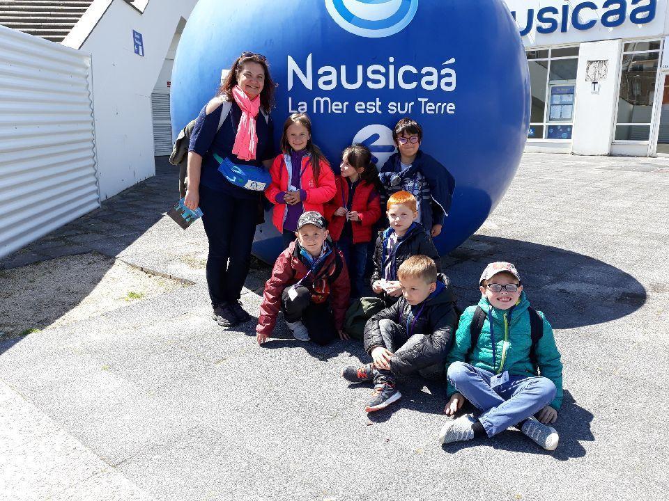 Visite de Nausicaa: sublime