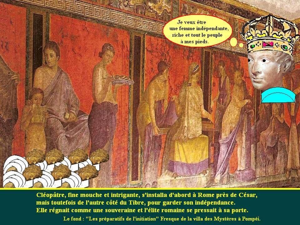 Face à face Nefertiti Cléopâtre