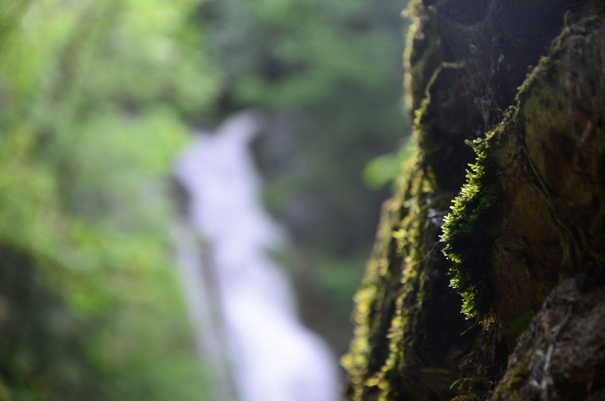 La route des cols Pyrénées