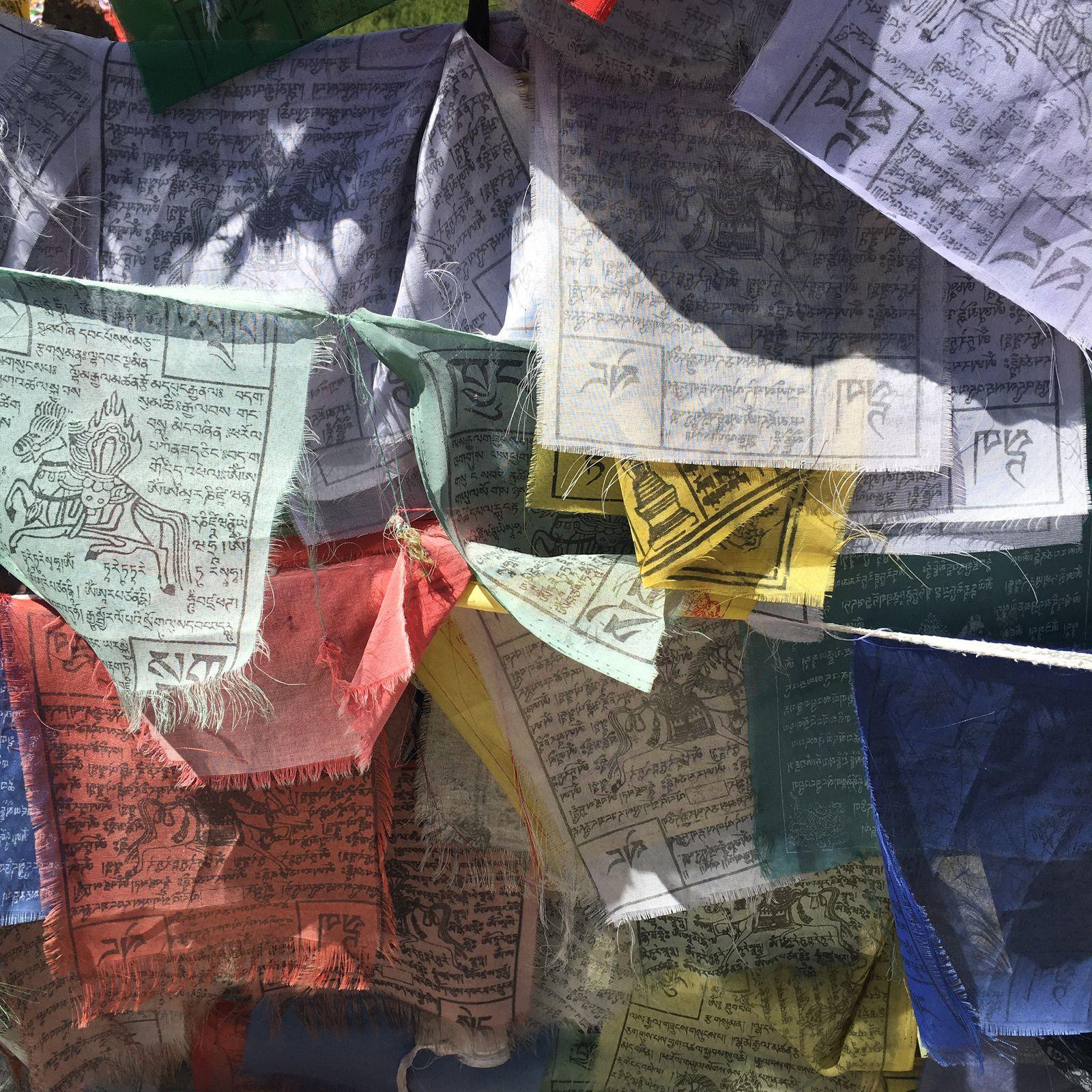 ALBUM - INDE 2019 : LADAKH, SUR LE TOIT DU MONDE