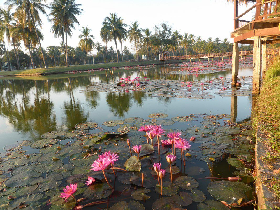 J27 – Vendredi 27 janvier 2017 – Sukhothai again