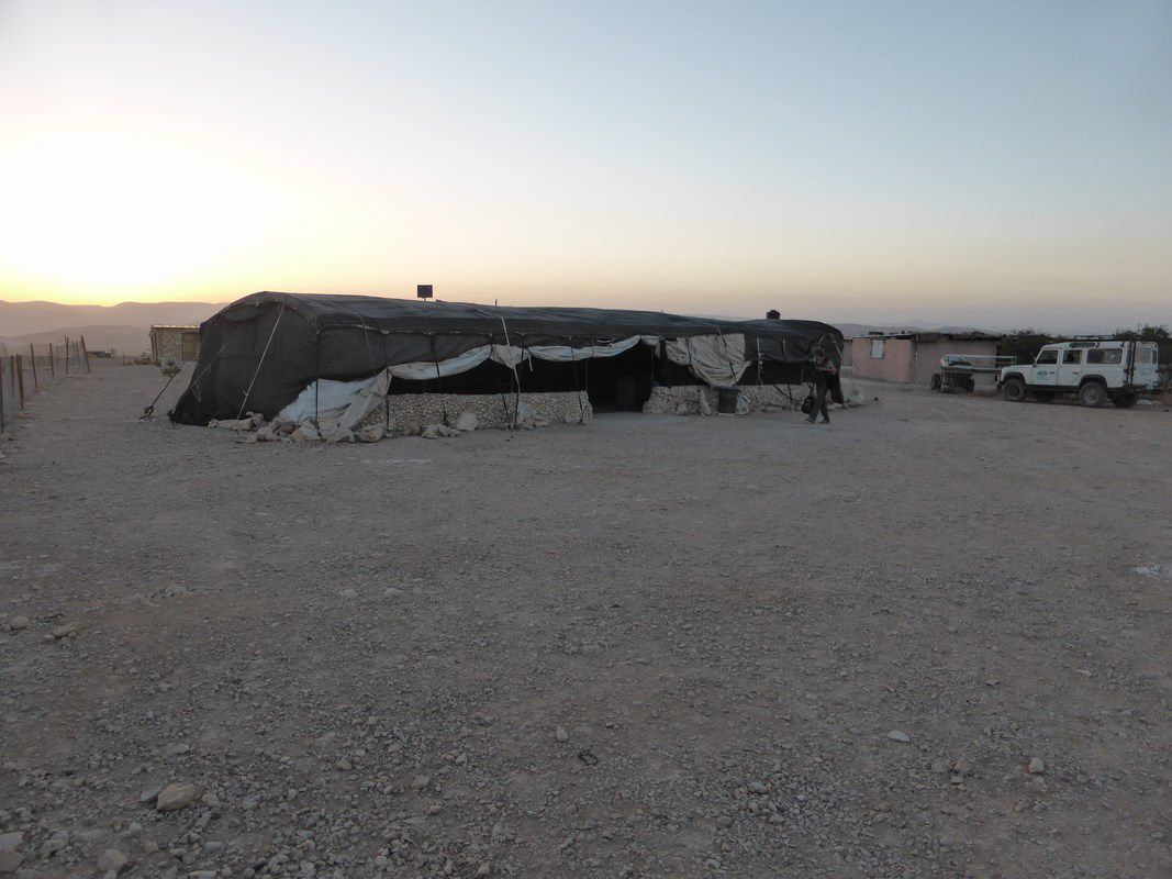 Au campement bédouin d'Abou Ismaël