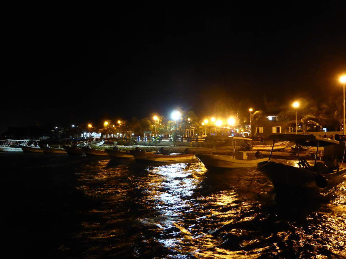 J20 - De San Pedro à Puerto Morelos