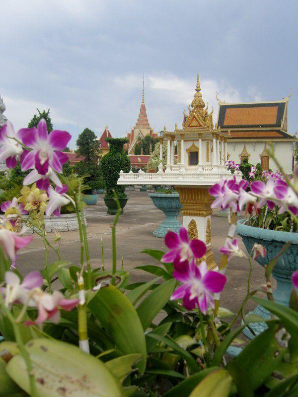J36 - Phnom Penh