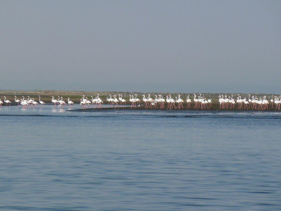 J14 - Walvis Bay