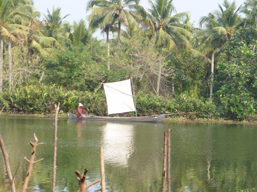 Vendredi 5 janvier – J16 – Kochi, les backwaters