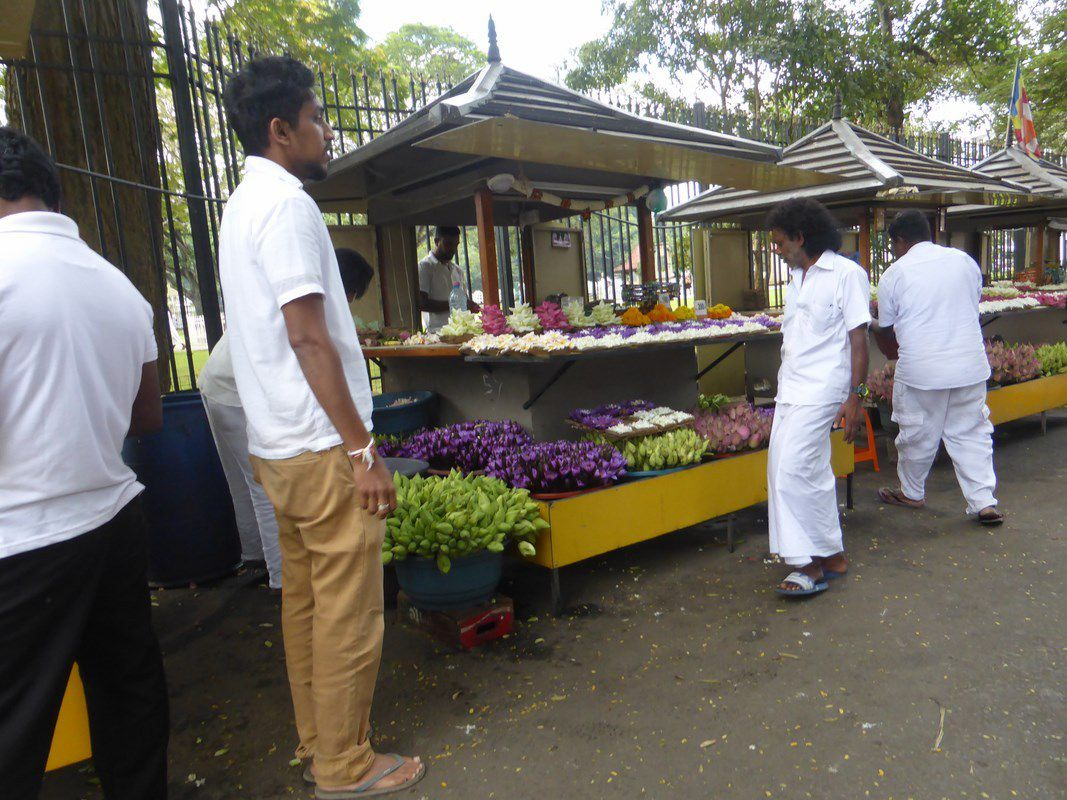 J24 - Around Kandy