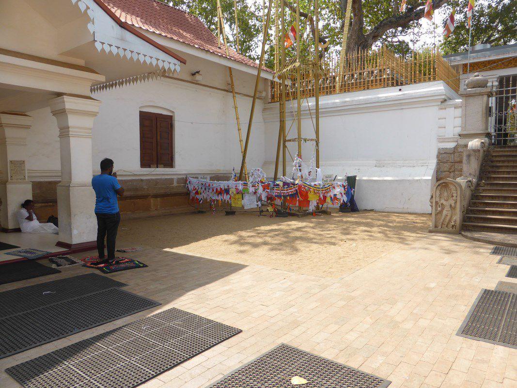 Mercredi 17 janvier 2018 – J28 – Anuradhapura