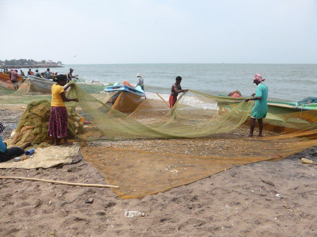 Lundi 22 janvier 2018 – J33 – Negombo