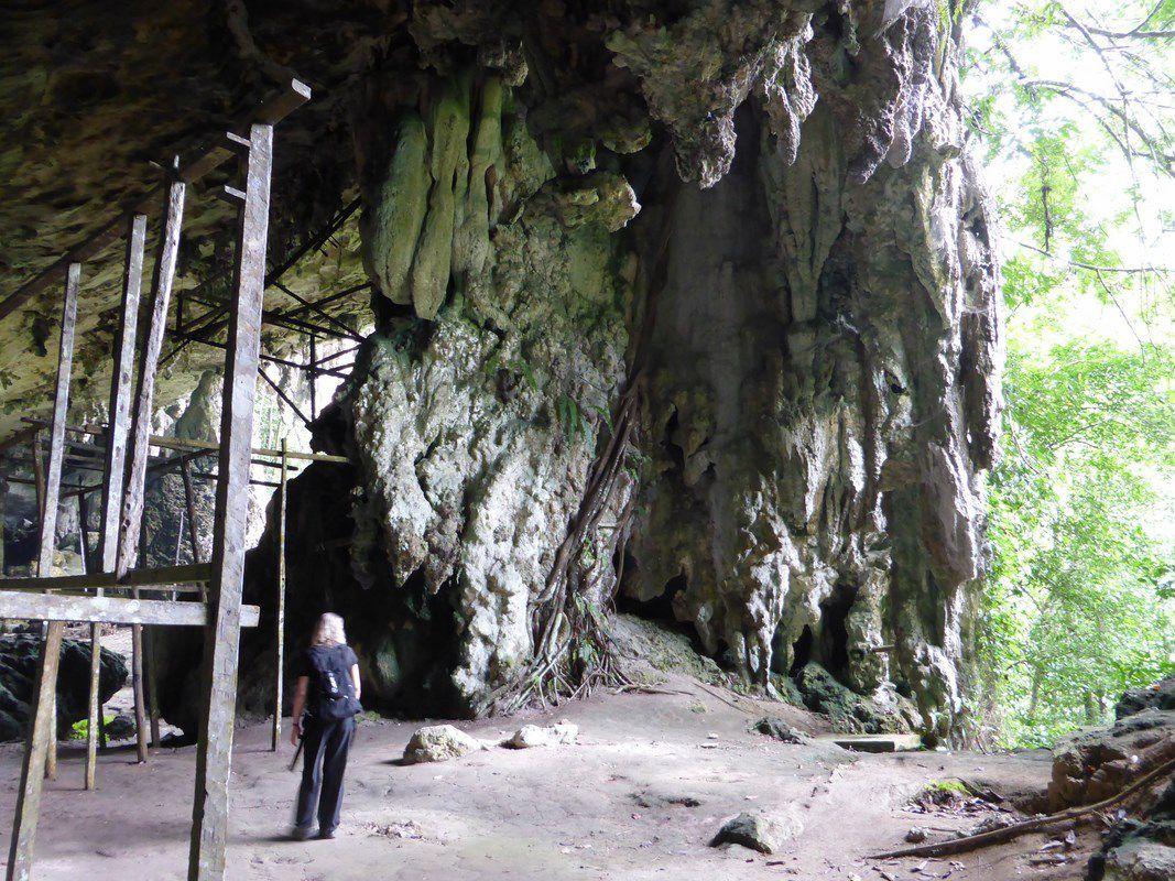 J9 - Bornéo