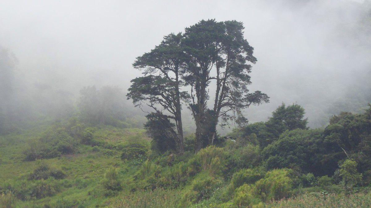 J14 - Mercredi 1er Janvier 2020 - La Ruta de las Cascadas