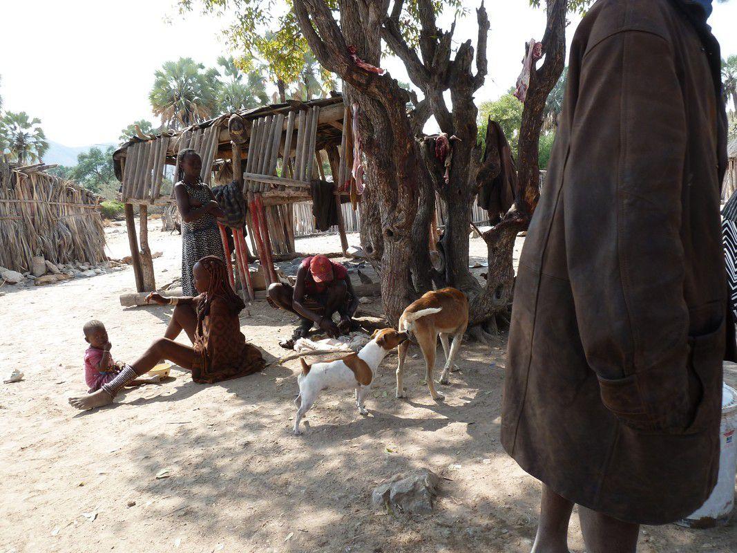 J20 – Mercredi 1er août 2012 – Epupa Falls – A la recherche des crocos…