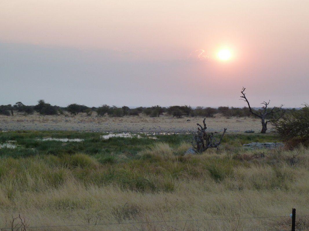 J22 – Vendredi 3 août 2012 – Namutoni