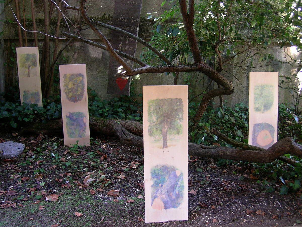 """Le """"mémorial"""" pour arbres disparus..."""