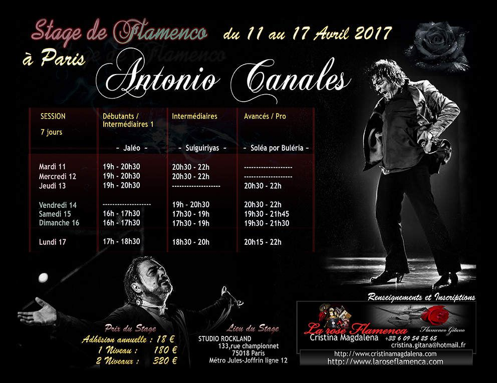 Stage de flamenco avec le Maestro Antonio Canales du 11 au 17 avril à Paris!Cours de flamenco à Paris avec Antonio Canales en avril 2017 à Paris!