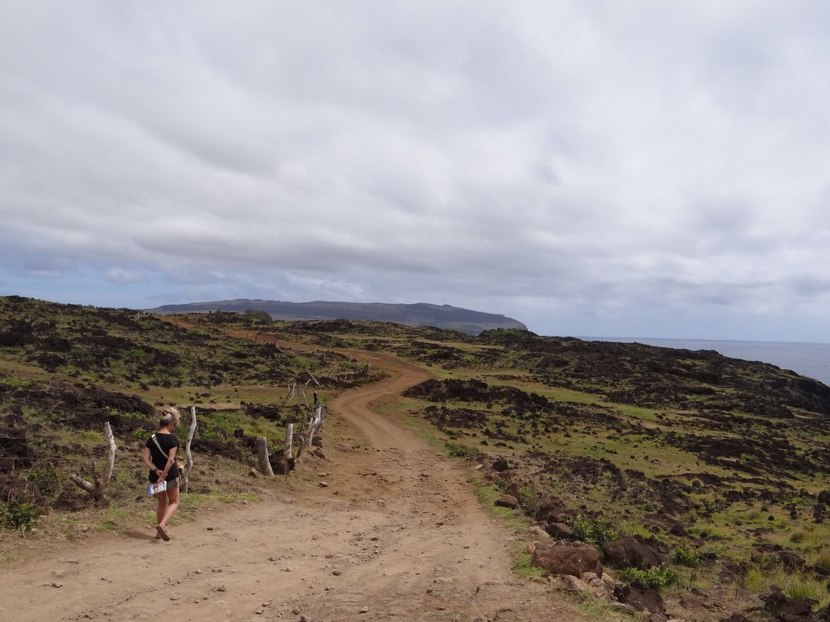 Voyage au Chili en 2013. San Pédro Atacama. Chanaral. Valparaiso. Ile Chiloé. Torres Del Paine. Ile de Pâques. Santiago
