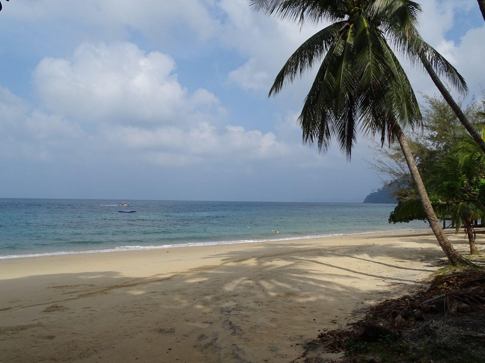 Voyage en MALAISIE  Janvier/Février 2020 Malacca . Ile Tioman